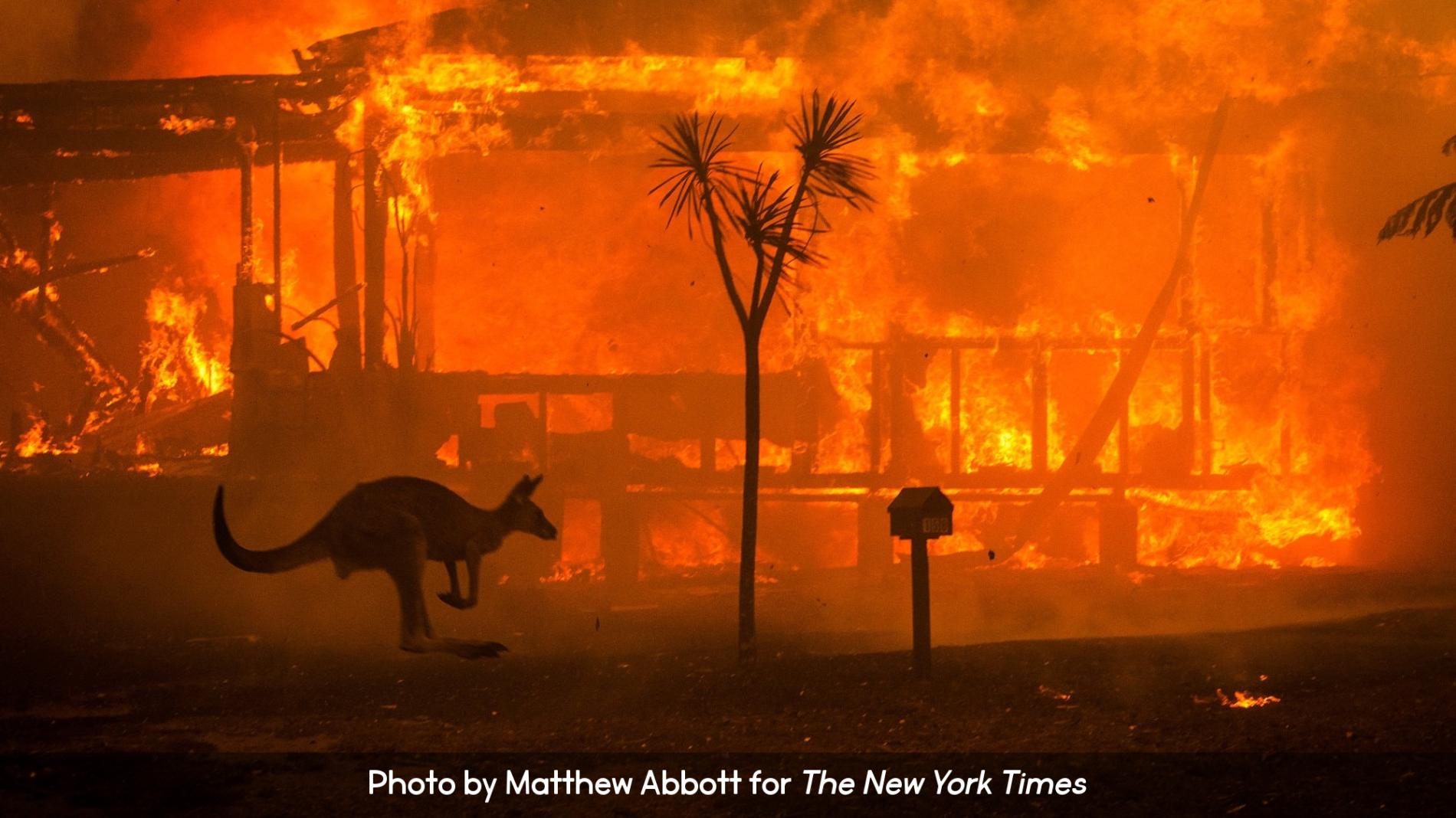 Australia Wildfire December 2019